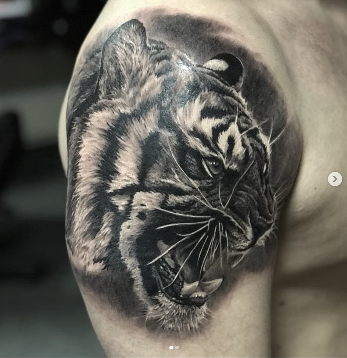 Sasha Tattoo